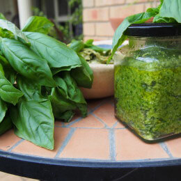 Amazing pesto Dr Julie Vecera